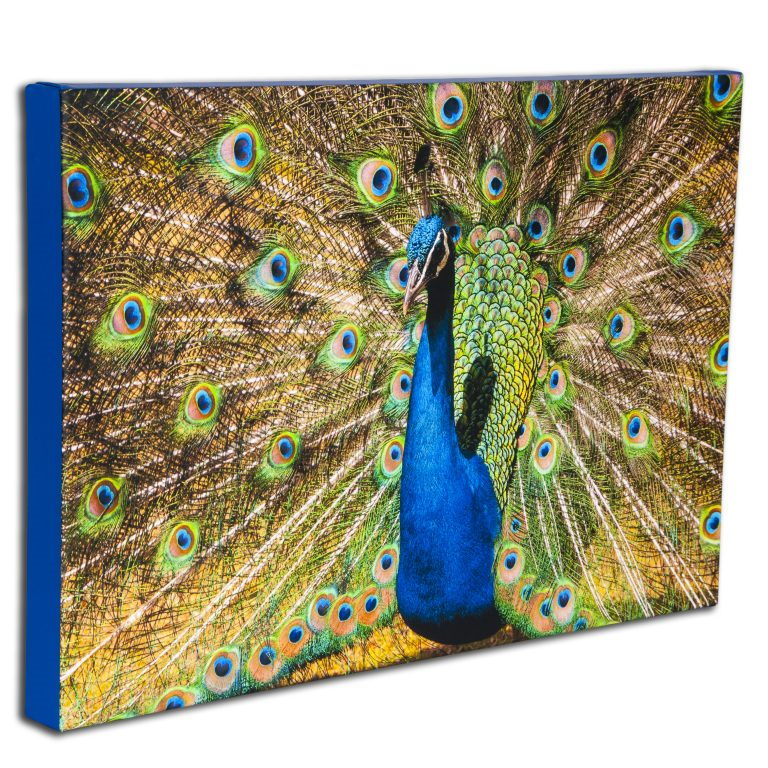 Classic Wrapped Stretched Canvas Prints