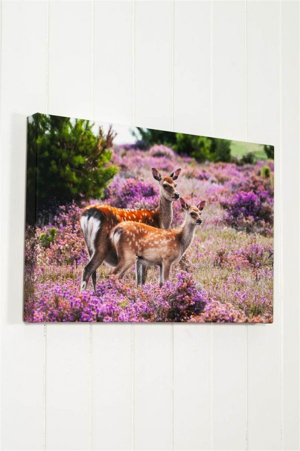 Deep Wrapped Fine Art Stretched Canvas