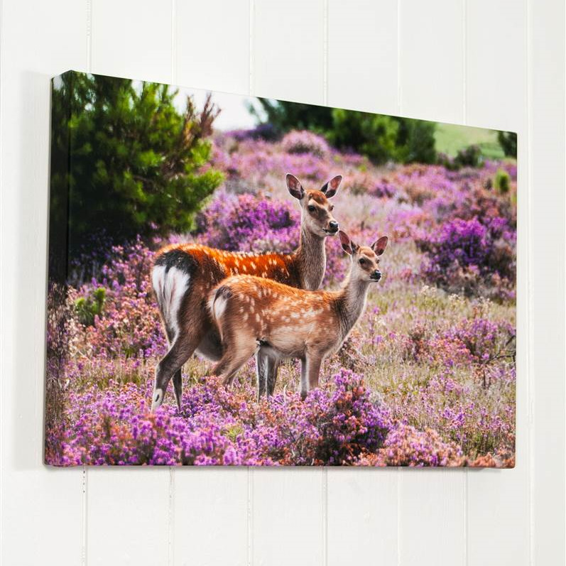 Deep Wrapped Fine Art Stretched Canvas Prints