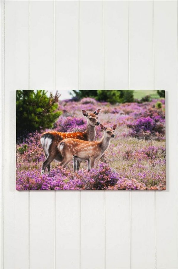 Deep Wrapped Stretched Canvas for Fine Art and Photography