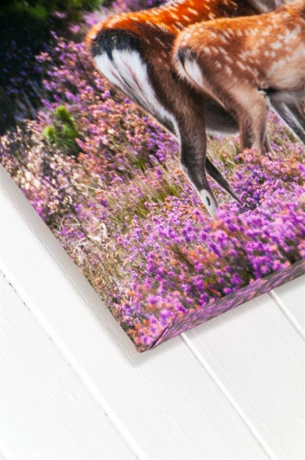Deep Wrapped Stretched Canvas for Photography and Fine Art Printing