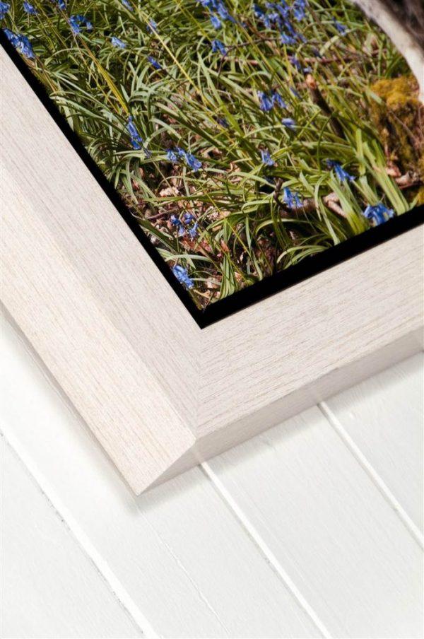 Prima Framed Stretched Canvas Printing - Corner